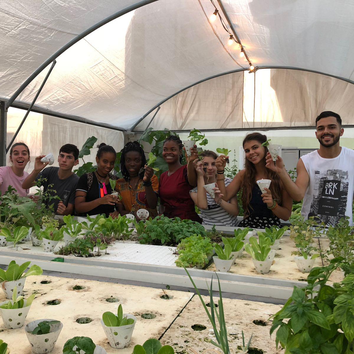 לכבוד יום הנוער העולמי: על פרוייקט WYRED של אוניברסיטת הקיץ לנוער