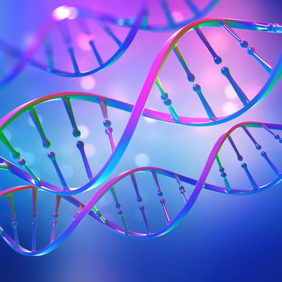 בוגרי הפקולטה לרפואה חשפו מנגנון חדש לבקרת ביטוי גנים