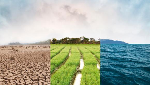 מה ניתן ללמוד ממשבר קורונה על משבר האקלים הקרוב?
